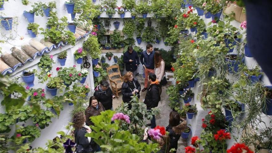 El Ayuntamiento aprueba el plan de tráfico y seguridad para el Festival de los Patios