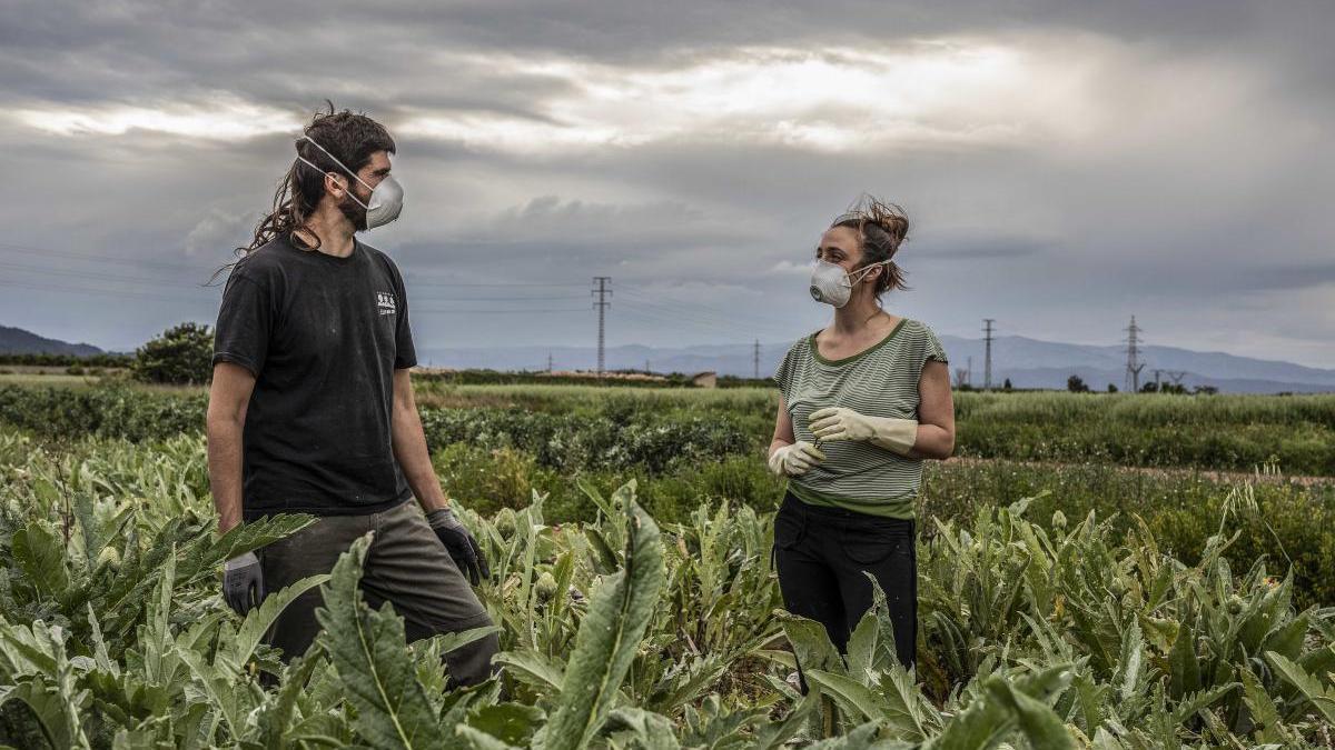 El Gobierno prevé prolongar las medidas extraordinarias sobre el empleo agrario hasta el 30 de septiembre