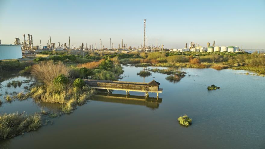 Cepsa celebra el XX aniversario de la restauración de La Laguna Primera de Palos
