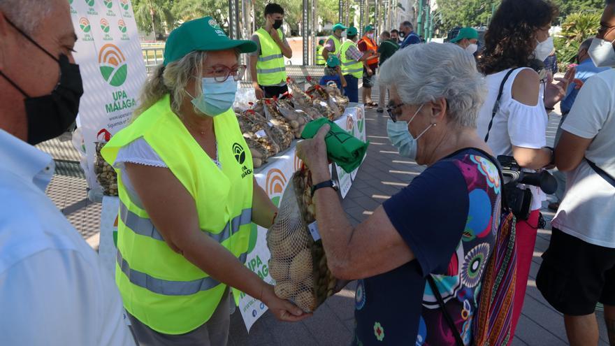 """Reparten 3.000 kilos de patatas en Málaga en protesta por precios """"de ruina"""""""