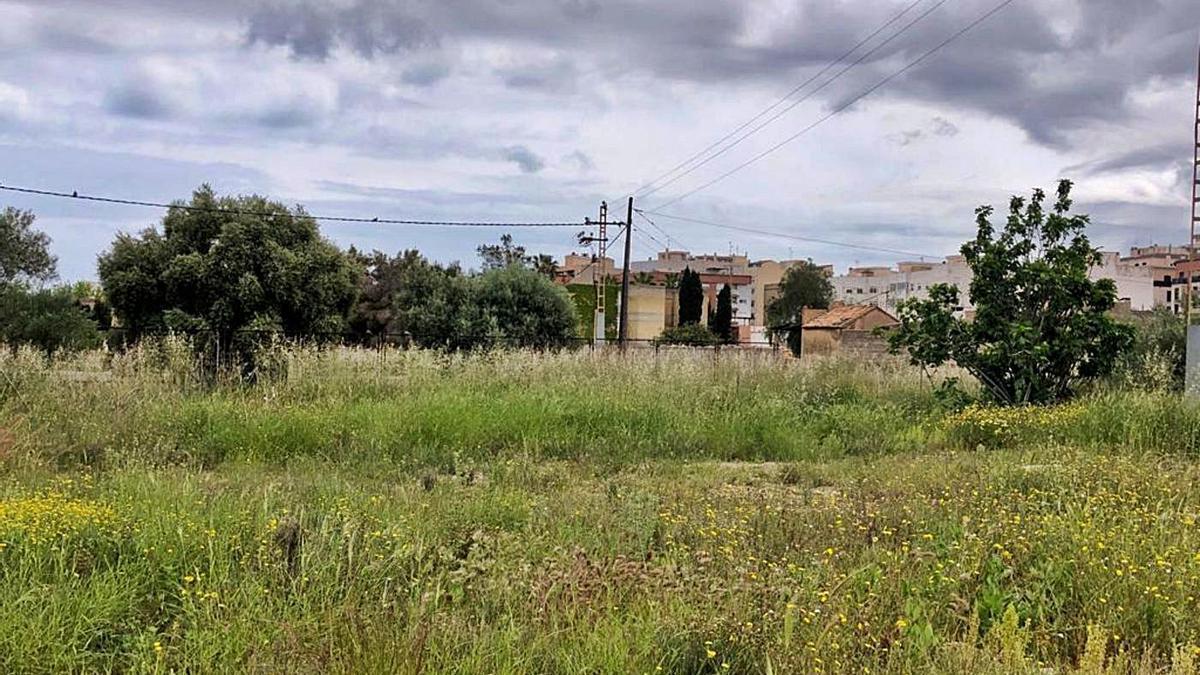 El Ayuntamiento acatará la sentencia del TSJCV para el abono de unos terrenos con acceso desde la calle Cabanes. | MEDITERRÁNEO