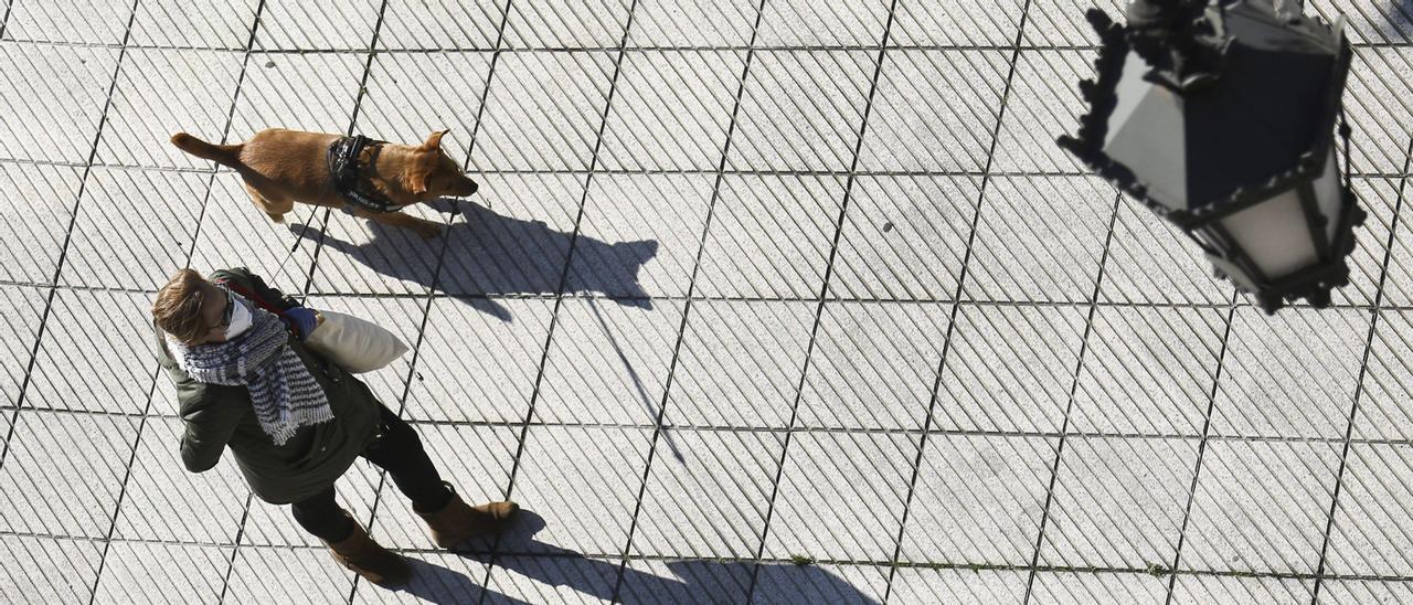Una mujer pasea a su mascota