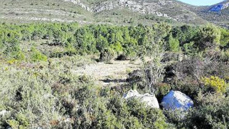Benifairó protegerá los terrenos que lindan con la Casella de Alzira