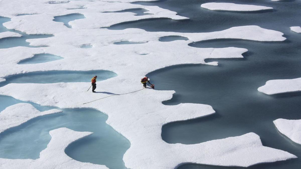 Bloques de hielo en el Océano Ártico