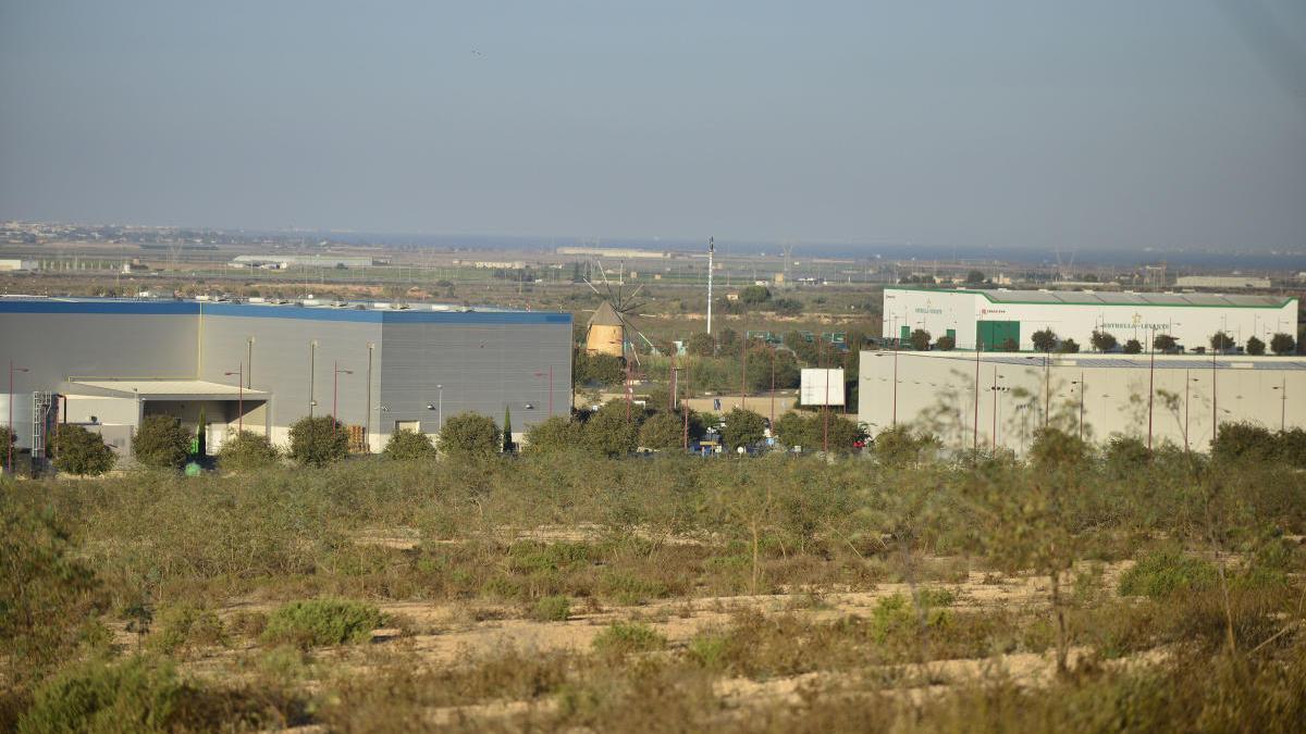 Los terrenos donde se construirá la ZAL, en el polígono industrial de Los Camachos.