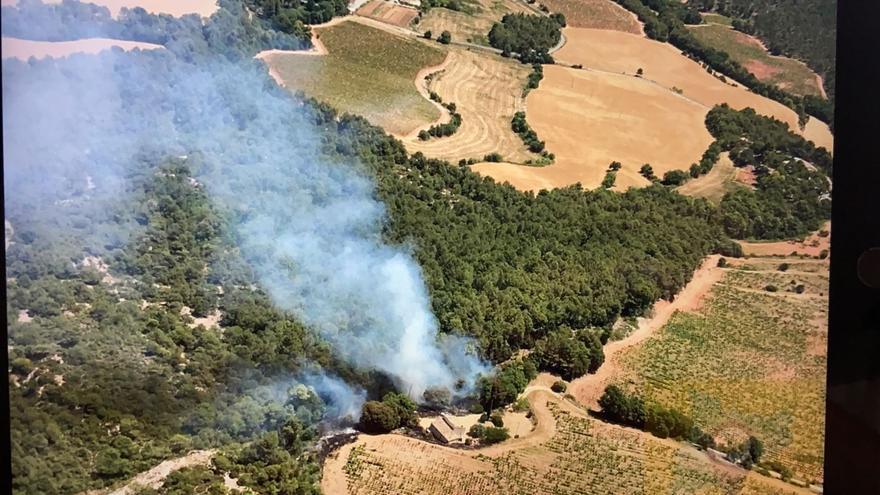 Donen per estabilitzat l'incendi de Santa Maria de Miralles