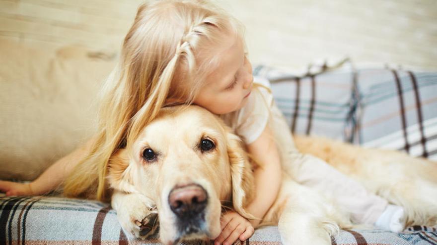 Los perros 'amansan' el estrés de los niños