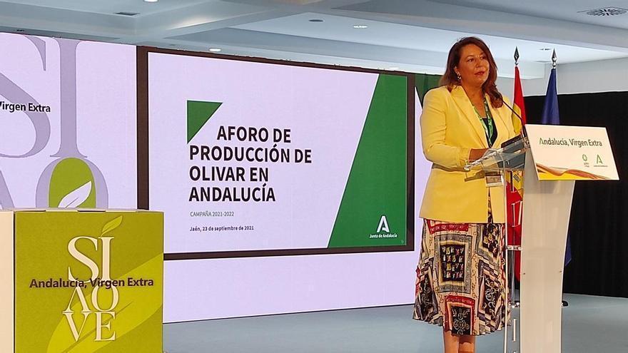 Córdoba prevé una producción de 254.000 toneladas de aceite de oliva, un 4,8% menos que en la campaña anterior