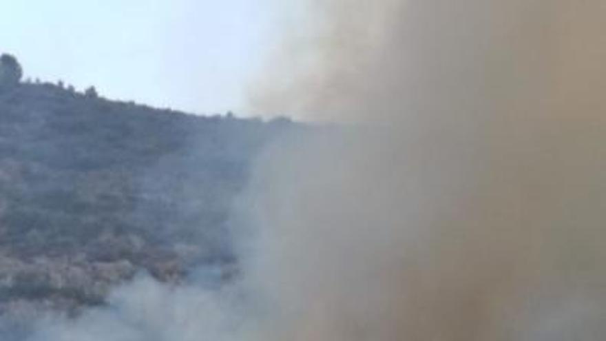 Declarado un incendio próximo a viviendas en El Genovés