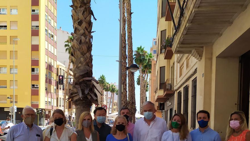 El PP intenta frenar en Europa la remodelación de la avenida de Lidón de Castelló