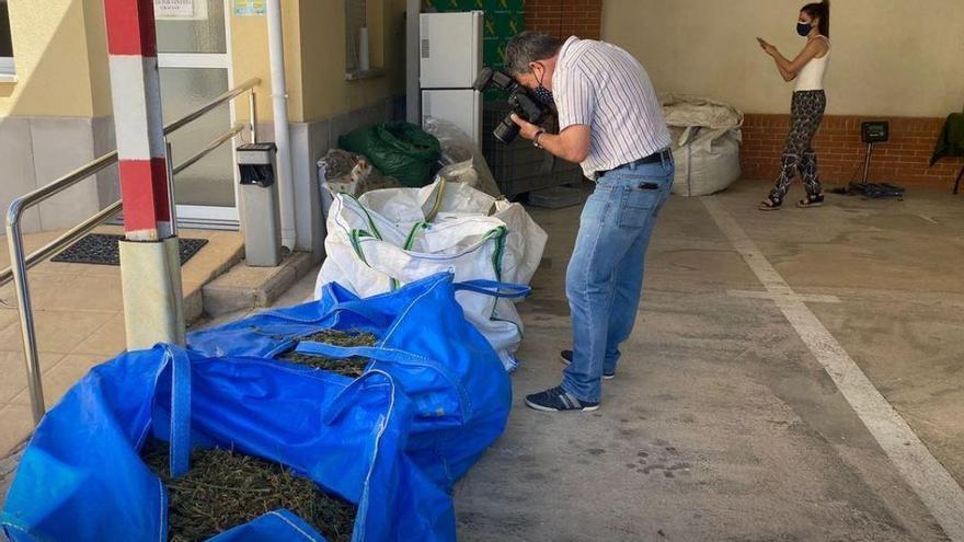 Desmantelan una fábrica de hachís en Bigastro tras morir por sobredosis cuatro presos en Murcia
