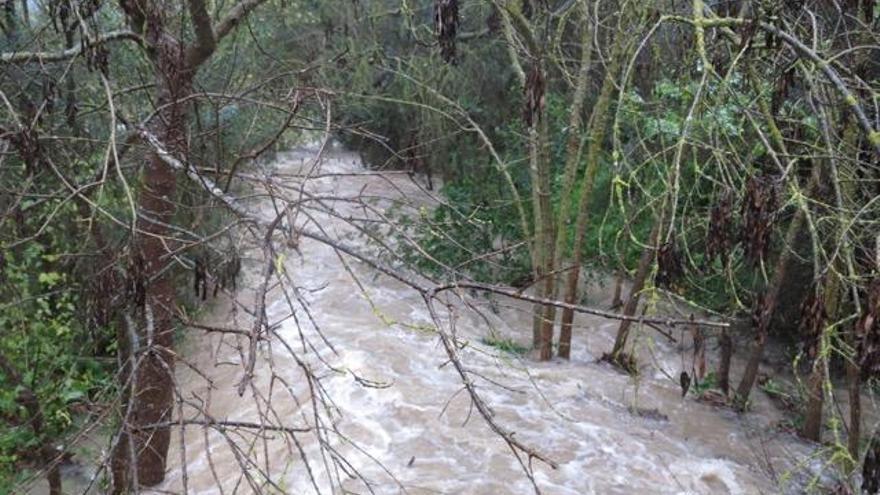 Wetteramt bestätigt: Rekordregen auf Mallorca