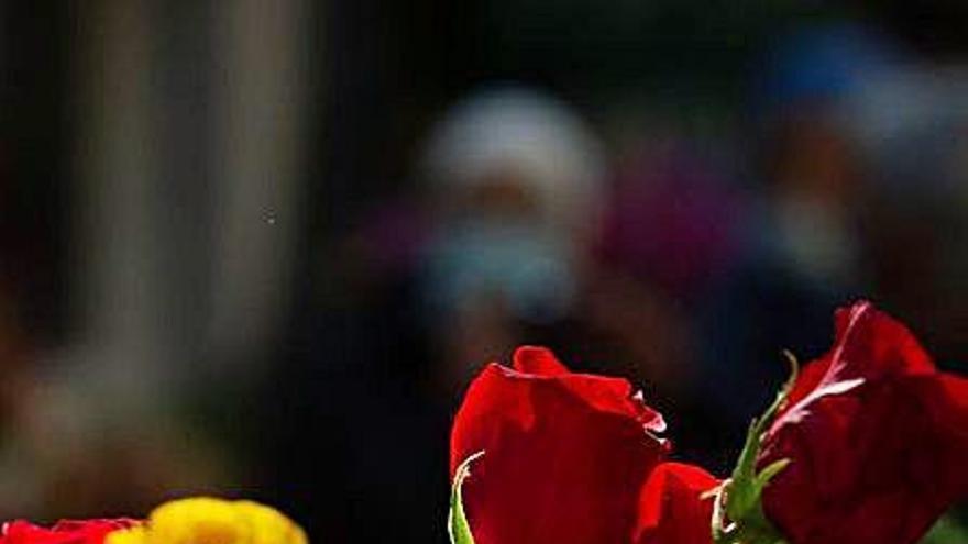 Els floristes venen més roses «perquè no hi ha intrusisme»