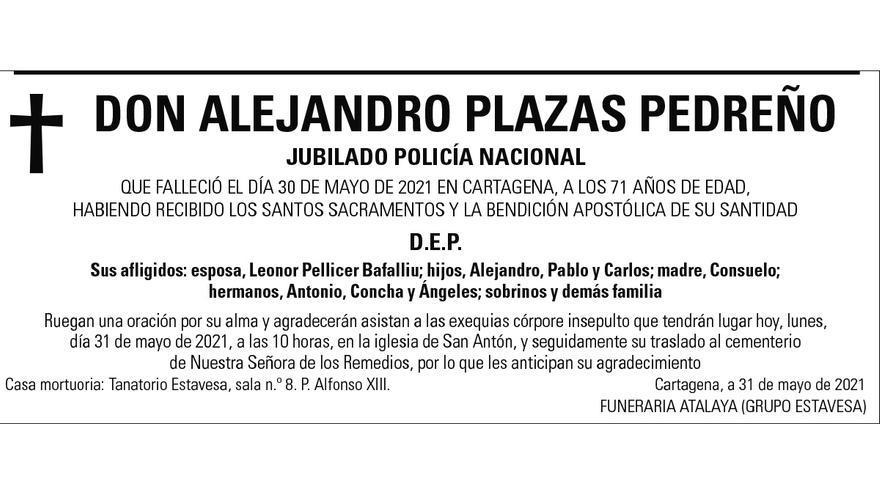 D. Alejandro Plazas Pedreño