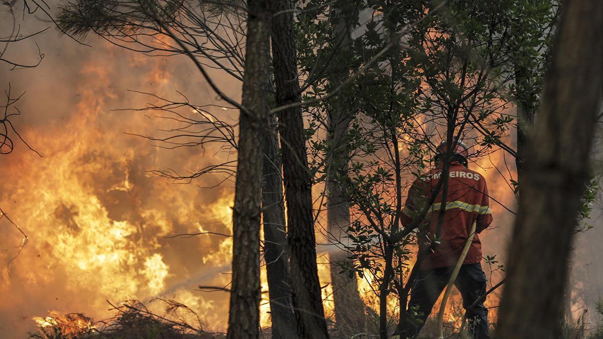 Un bombero lucha contra el incendio que causó la muerte a uno de sus compañeros // Efe