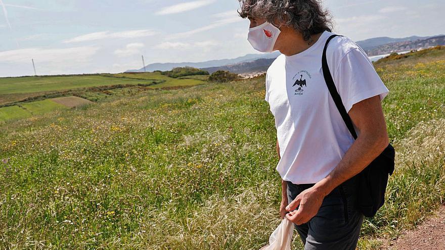 Las mariposas de San Juan, termómetro del cambio climático