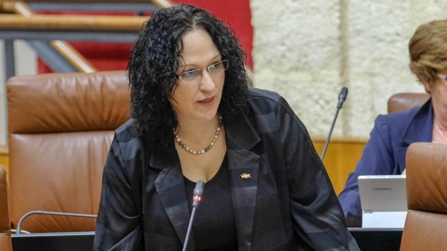 Una diputada de VOX por Almería denuncia acoso de sus compañeros