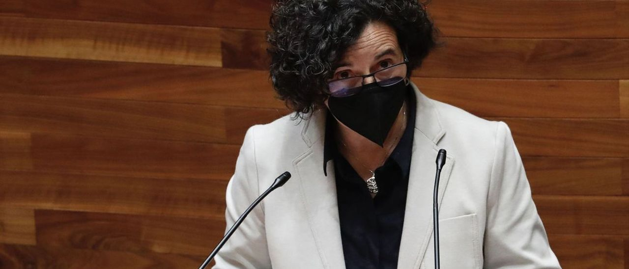 Berta Piñán, esta mañana en la Junta