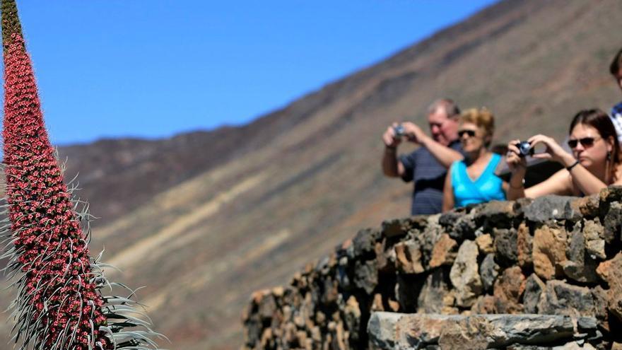 Los alojamientos y agencias de viajes de Canarias ya pueden adherirse a los 'bonos turísticos'