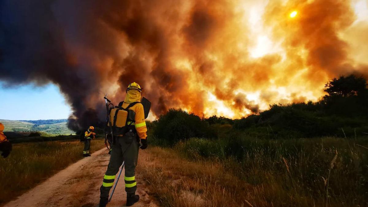 Las llamas avanzan sin control // Brif Tabuyo