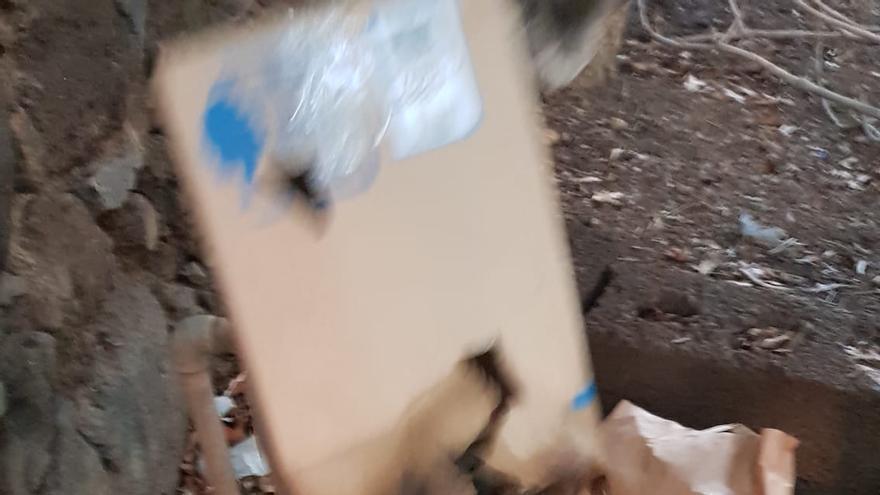 Encuentran una gallina muerta en el Parque Viera y Clavijo