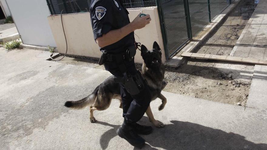 Cort rectifica y lleva a Bellver a dos de los tres perros de la Unidad Canina eliminada