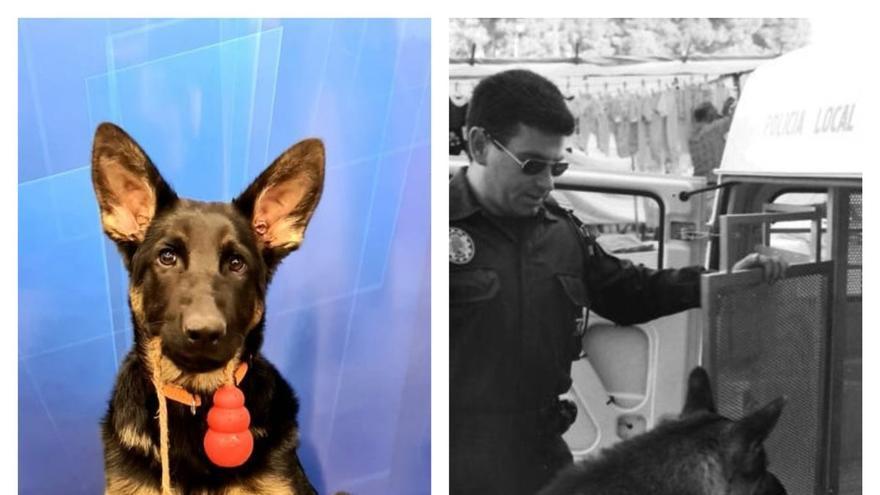 La patrulla canina se estrena en Xàbia