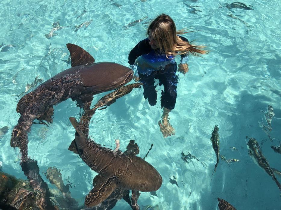 Gádor Muntaner, viviendo entre tiburones
