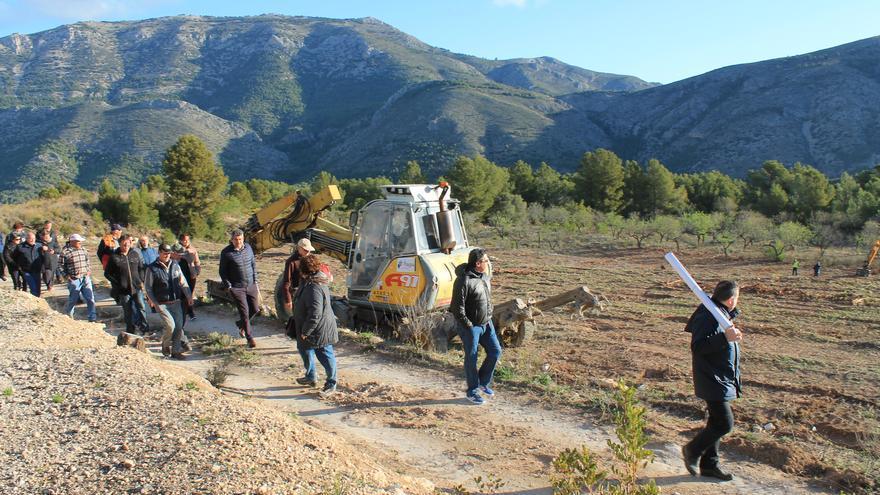 ASAJA presenta alegaciones al borrador de las Ayudas a la Replantación de cultivos afectados por la xylella