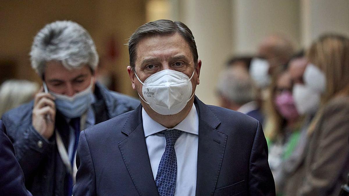 33 El ministro Luis Planas se dirige a una sesión parlamentaria.
