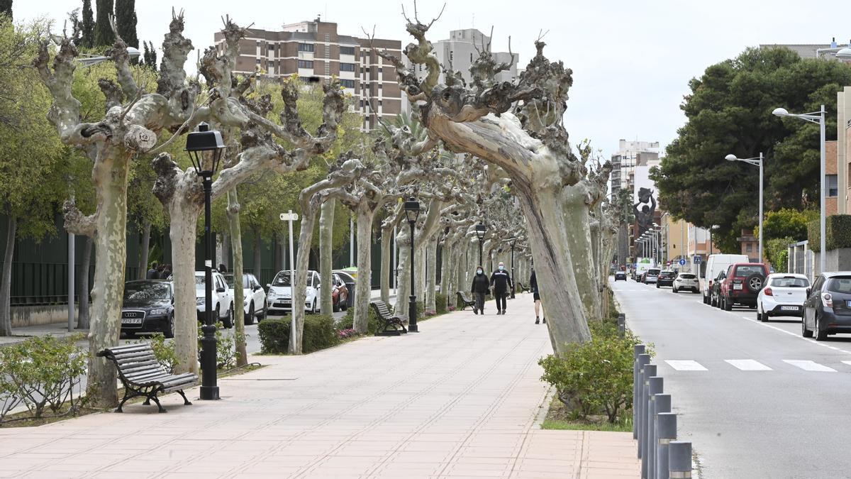 Imagen de un tramo de la avenida de Lledó de Castelló.