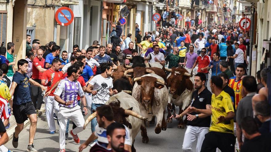 Almassora lidera la vuelta de los 'bous al carrer' con un encierro de Fuente Ymbro el 9 d'Octubre