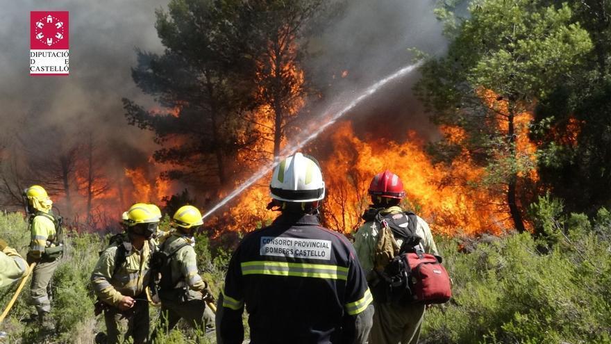 Castellón afronta el riesgo alto de incendio este verano con 78 planes forestales