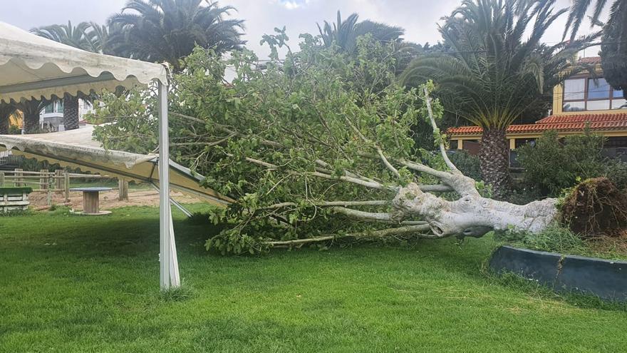 Canarias, preparada para un sábado de fuerte viento y oleaje