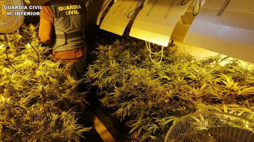 La policía local de Torrevieja detenida está acusada de formar parte de una banda de venta de marihuana y cocaína, según la Guardia Civil