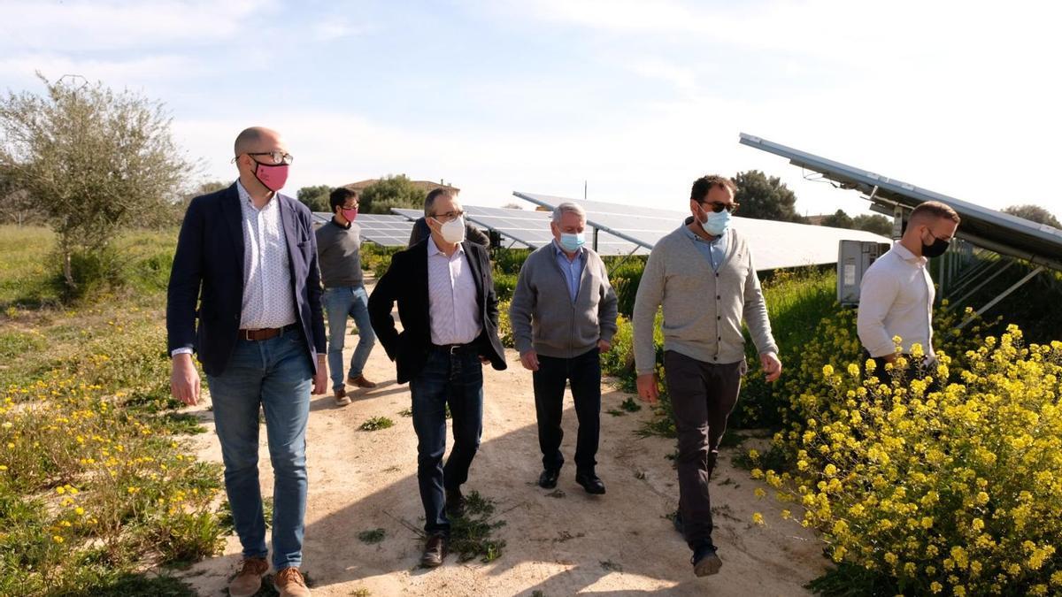 Yllanes ha visitado esta mañana el parque fotovoltaico de Son Corcó, en Consell.