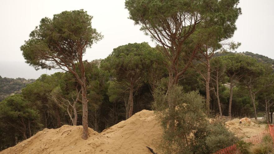 Entitats ecologistes denuncien Begur per autoritzar unes obres al sector Montcal