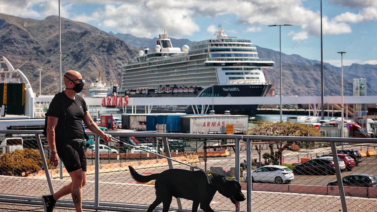 Un hombre pasea con su perro por Santa Cruz de Tenerife.