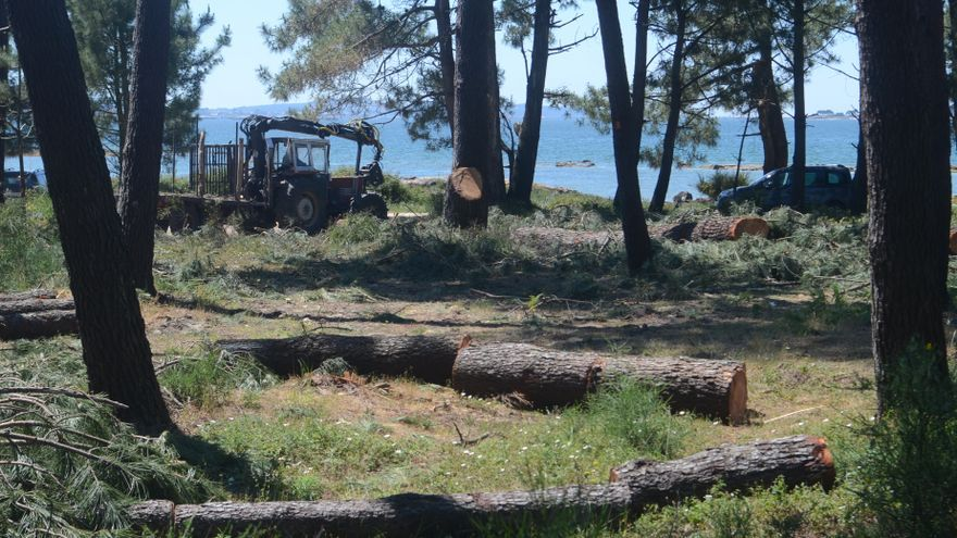 San Miguel de Deiro critica una tala en terrenos de la comunidad de montes