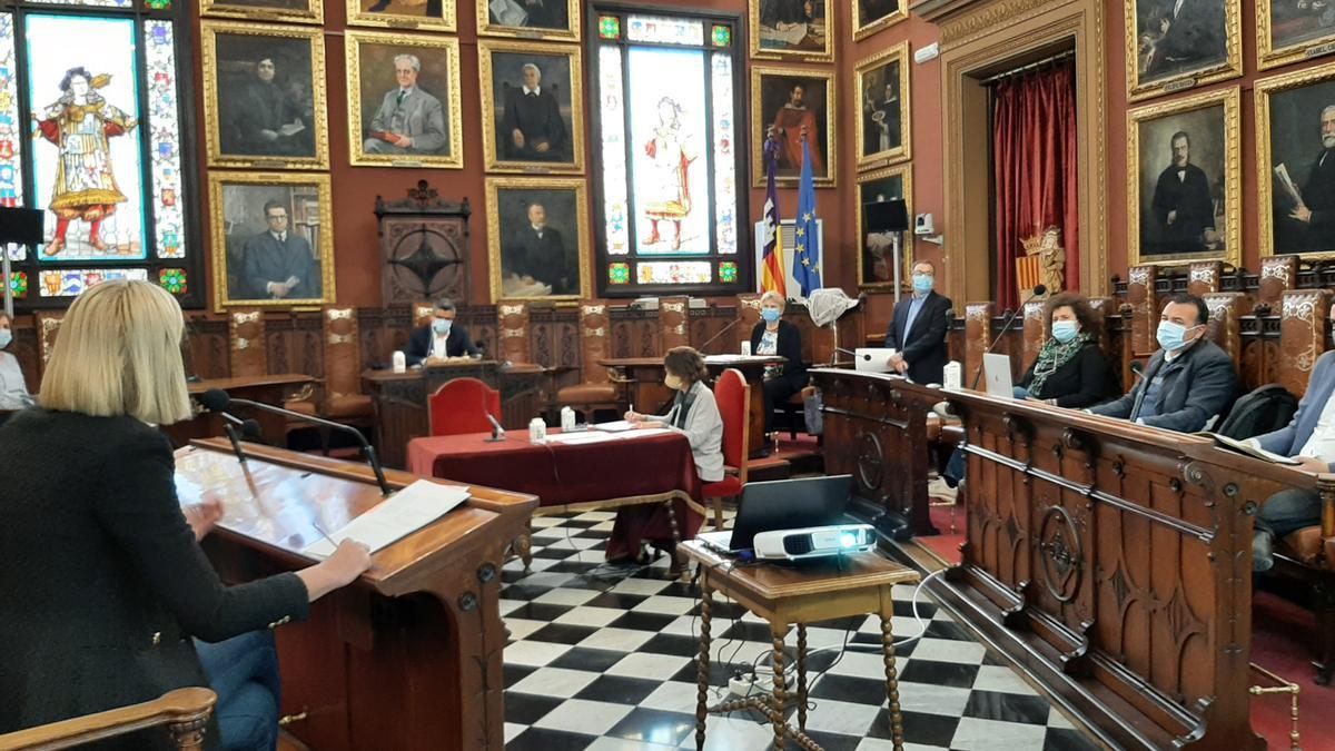 La Defensora ha intervenido esta mañana en la comisión previa al pleno.