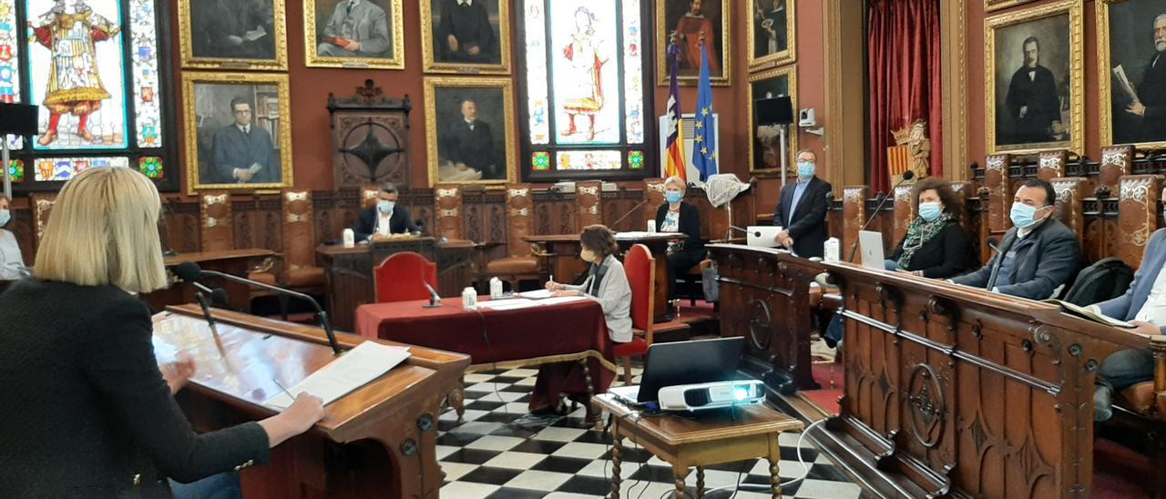 La Defensora suspende la política de Participación Ciudadana de Cort