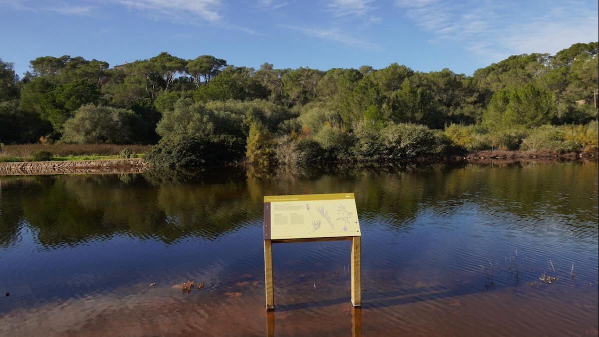 El PORN del Parque Natural de Mondragó sale a exposición pública