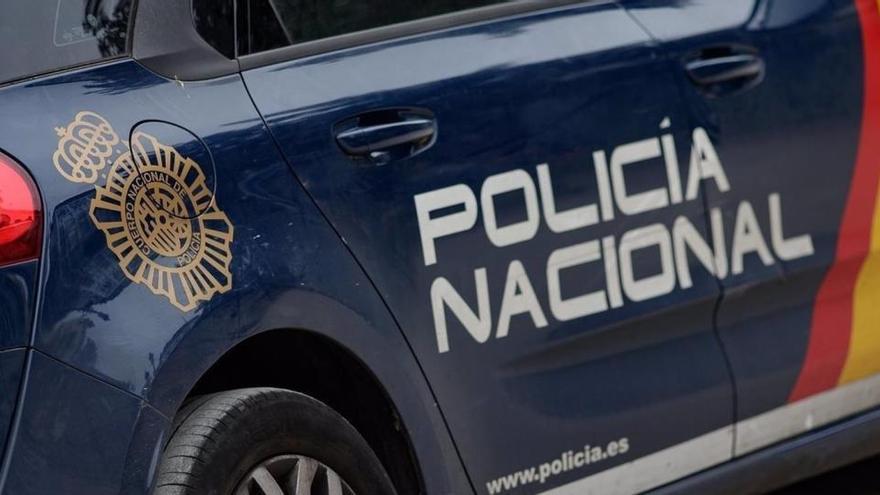 Detenida por lanzar desde tres metros a un perro en Valencia