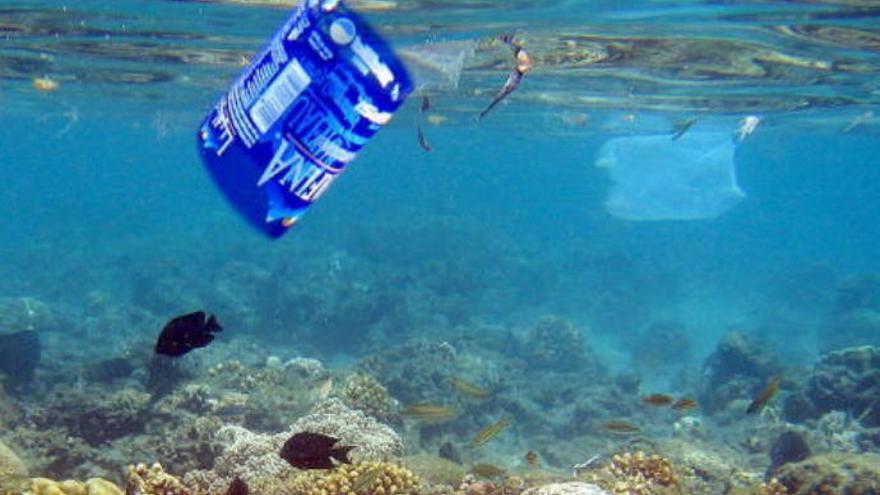 Retiran más de 4.000 kilos de basura de los fondos marinos de Canarias