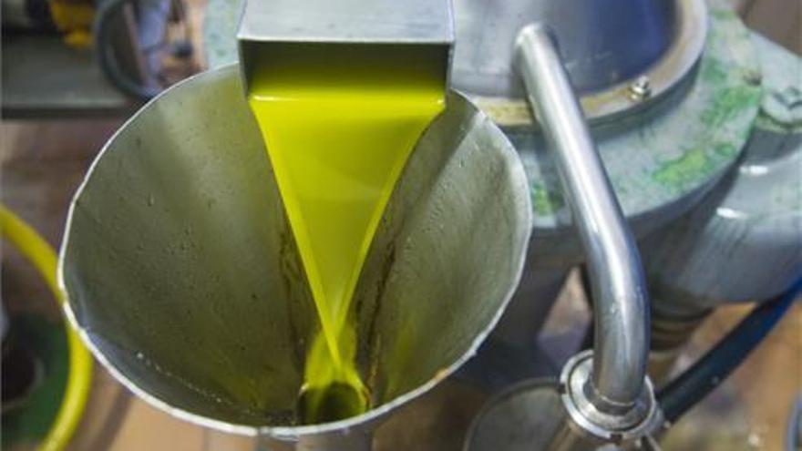 Las salidas de aceite de oliva al mercado se sitúan en cifras históricas