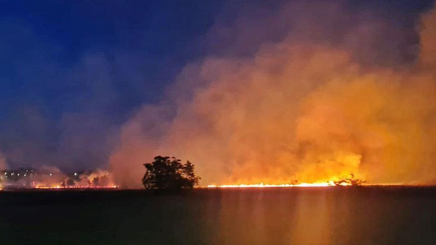 El incendio junto a la Vía del Canal en Benavente se salda con catorce hectáreas calcinadas