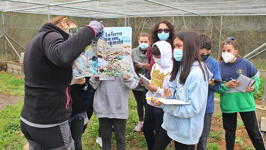 Escolares de Binissalem conocen el entorno de las lagunas de can Figuera