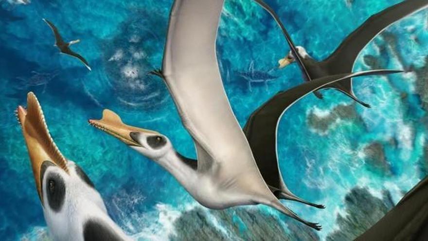Descriuen una nova espècie de rèptil volador, el més gran trobat a la península Ibèrica