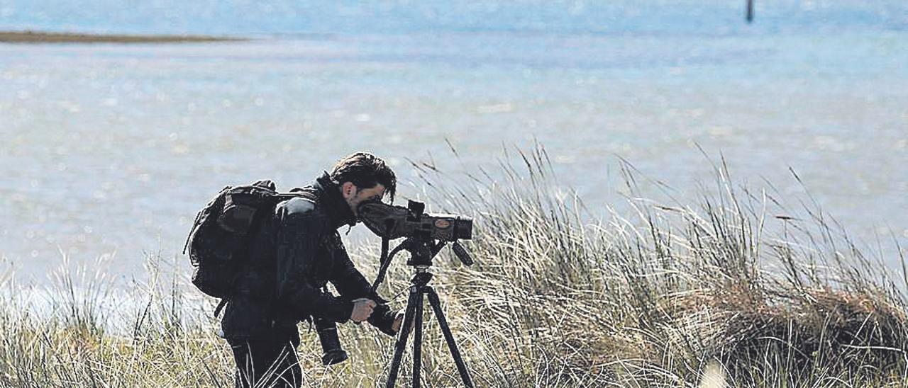Observación de aves en la ensenada de Llodero, en la ría de Avilés. | J. Rus