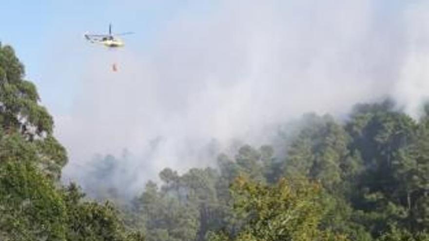 Controlado el incendio que quemó 30 hectáreas entre Crecente y Cortegada
